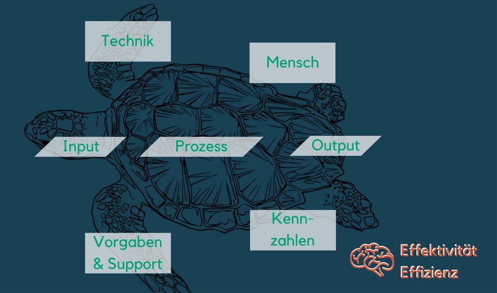 Prozess-Turtle